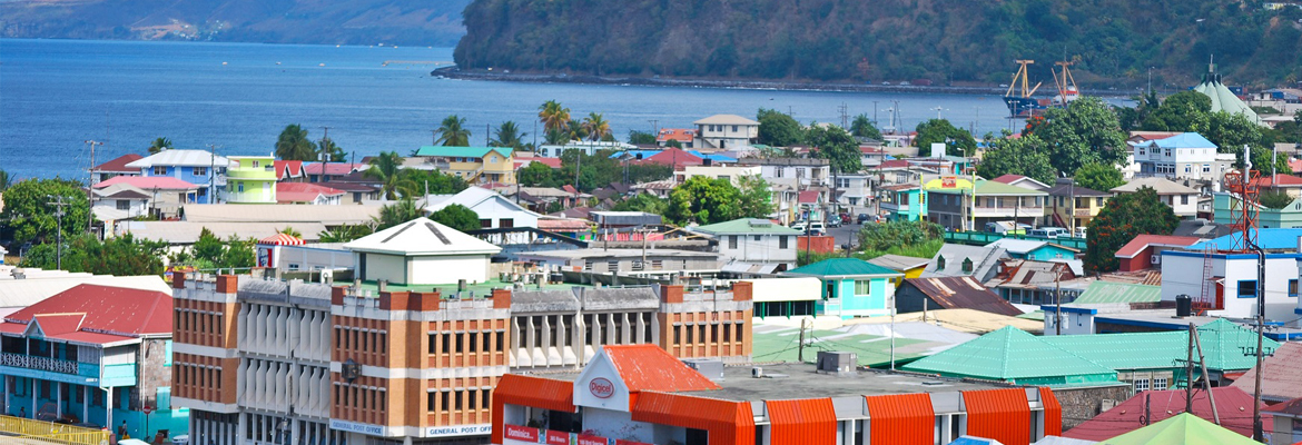 Immigration consultants, Dominica citizenship by investment, investor visa